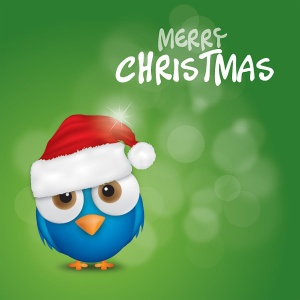 merry xmas bird