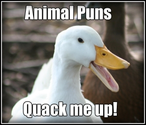 animal puns quack me up ADJ