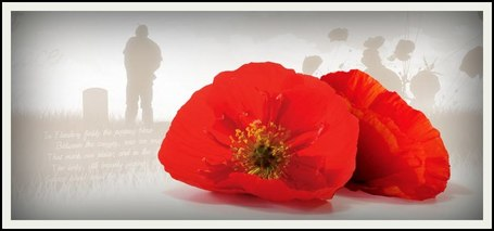 poppies_for_remembrance_day_border_1_50-smaller